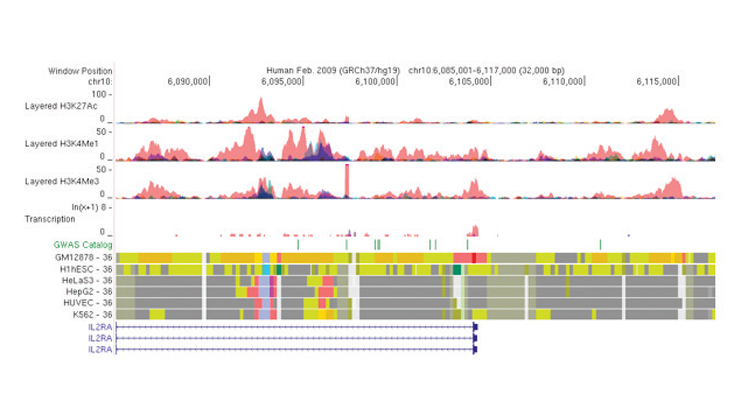 An Integrative and Discriminative Epigenome Annotation System.
