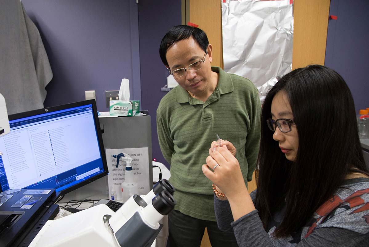 Graduate Student looking at a microscope slide with Gong Chen looking on