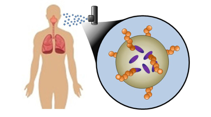 Diagram of anogel composition and aerosol delivery showing human lungs as part of the diagram.