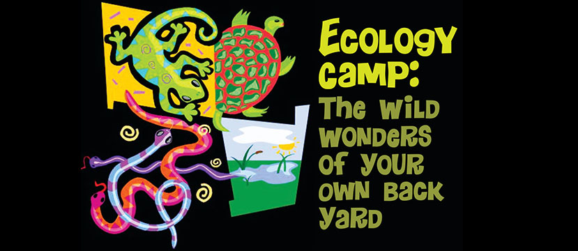 Ecology Camp Logo