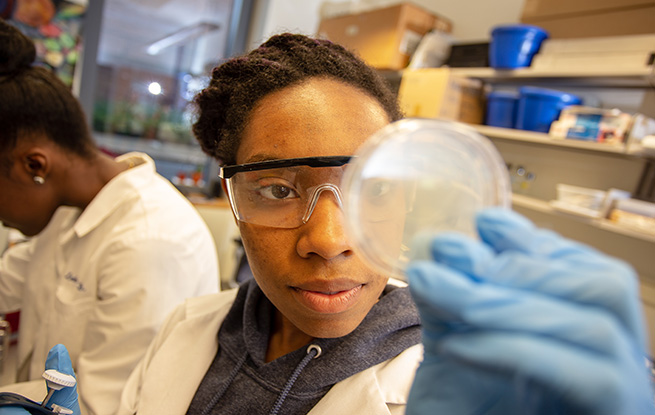 Woman of color in lab looking at a petri dish