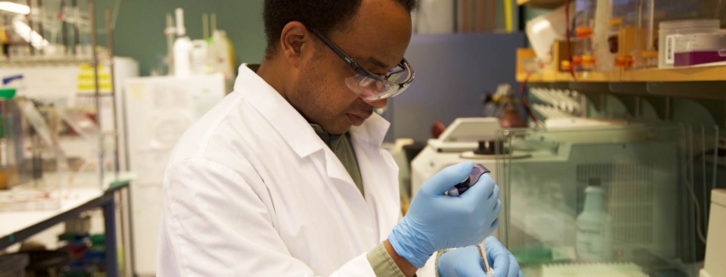 Researcher from the Department of Chemistry working in the laboratory.