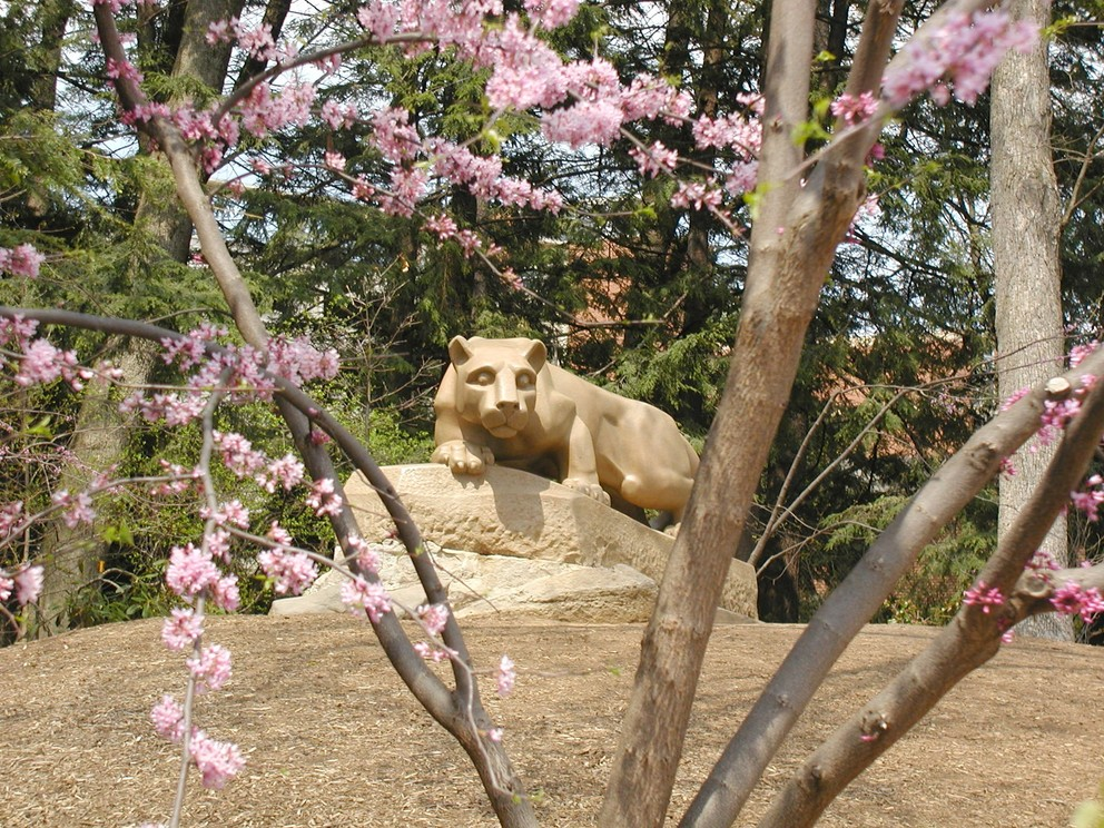 Lion shrine with flowers