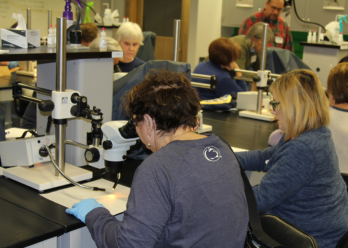 Participants had the opportunity to analyze evidence with high-powered microscopes as well as other lab equipment that forensic scientists use.