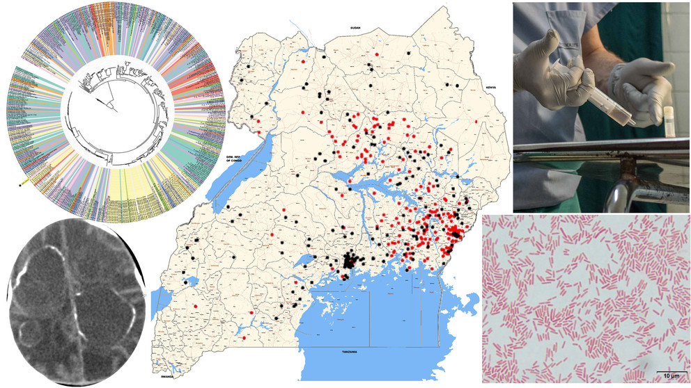 collage of Uganda map, virus genome and others