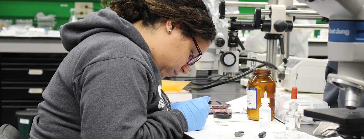 A student performs microcrystal tests on evidence
