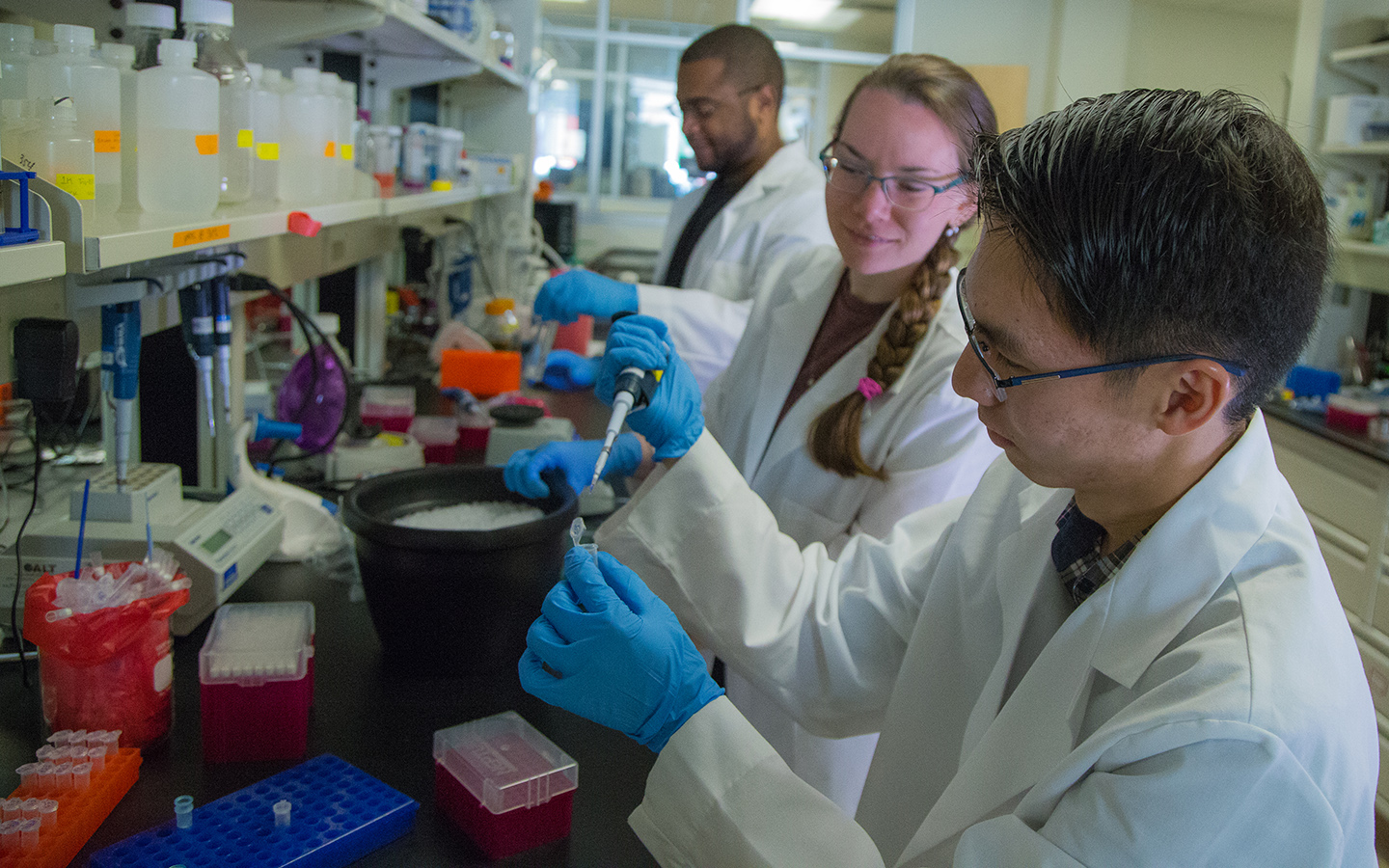 student working together at the lab bench