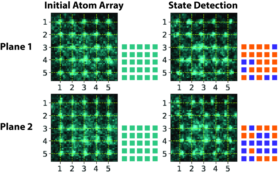 New method allows extremely accurate measurement of the quantum state of atomic qubits—the basic unit of information in quantum computers. Atoms are initially sorted to fill two 5x5 planes (dashed yellow grid marks their initial locations). After the first images are taken, microwaves are used to put the atoms into equal superpositions of two spin states. A shift to the left or right in the final images corresponds to detection in one spin state or the other. Associated square patterns denote atom locations (cyan: initial position, orange and blue: shifted positions). Credit: Weiss Laboratory, Penn State