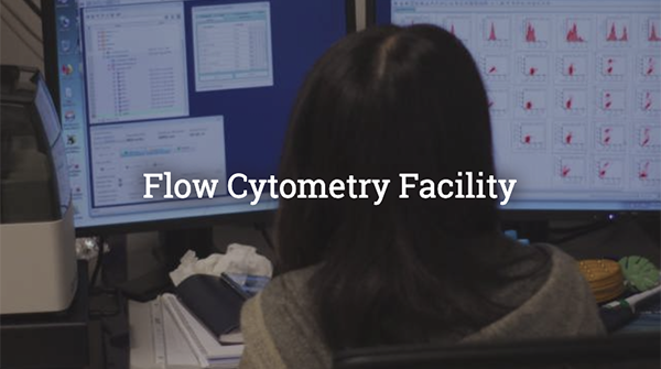 Flow Cytometry Facility