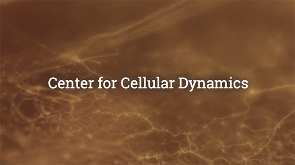 Center for Cellular Dynamics