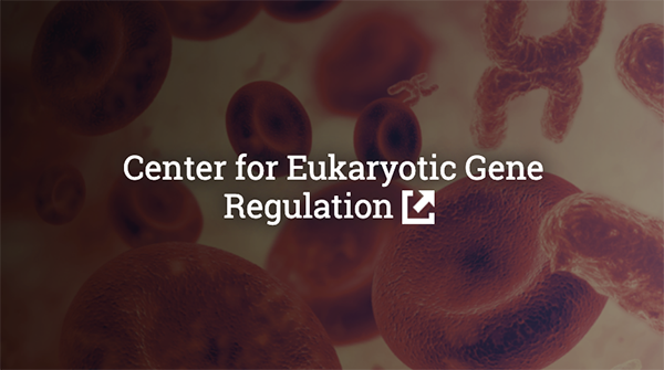 Center for Eukaryotic Gene Regulation
