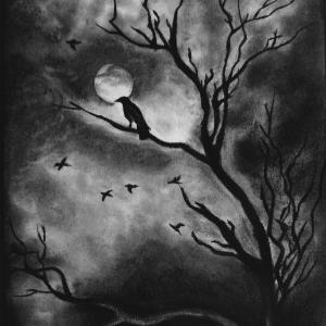 A sketch by Neeraja Marathe of a crow in a tree at night
